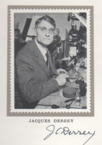Derrey