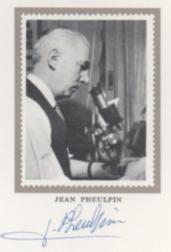 Pheulpin 2